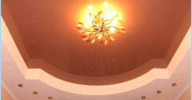 การออกแบบฝ้าเพดานในห้องโถงที่มีรูปถ่าย