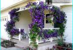 พระเยซูเจ้าสำหรับสวน: การออกแบบสวนกับพระเยซูเจ้า