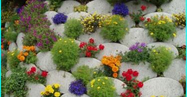 ทำงานในสวนในเดือนมีนาคม: วิธีการดูแลสวนของคุณ?