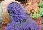 การป้องกันของไม้จากความชื้น, ไฟไหม้, แมลงและเน่า: ภาพรวม